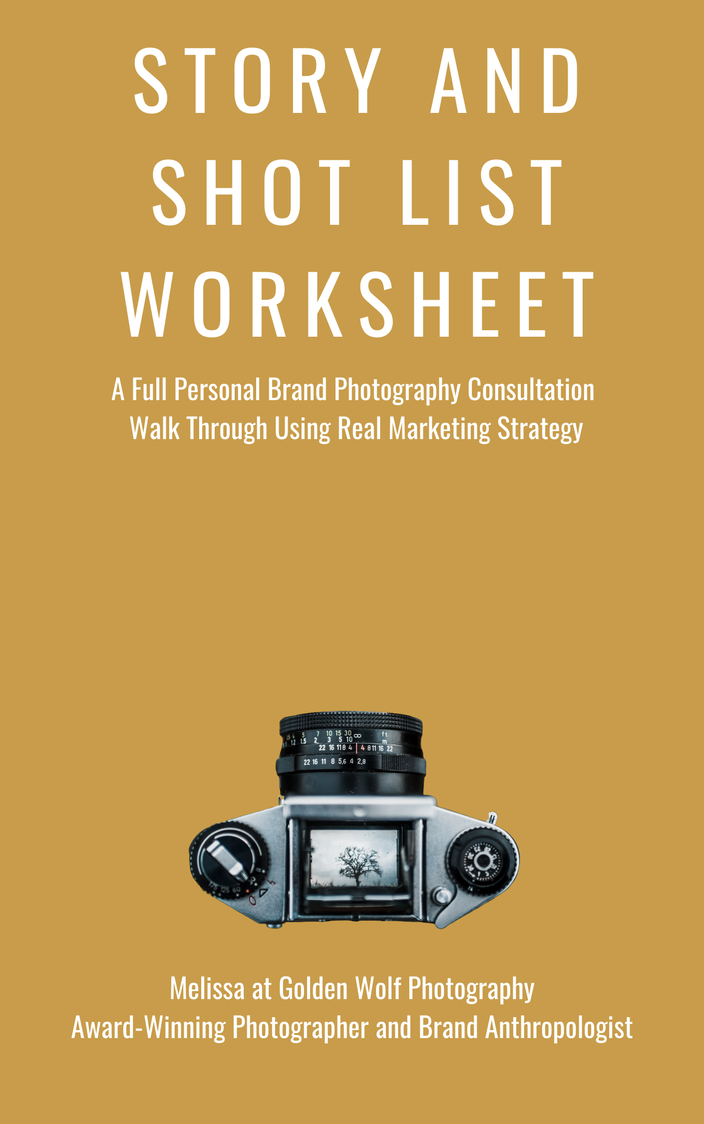 Painless Guide to Breaking In Personal Brand Photography