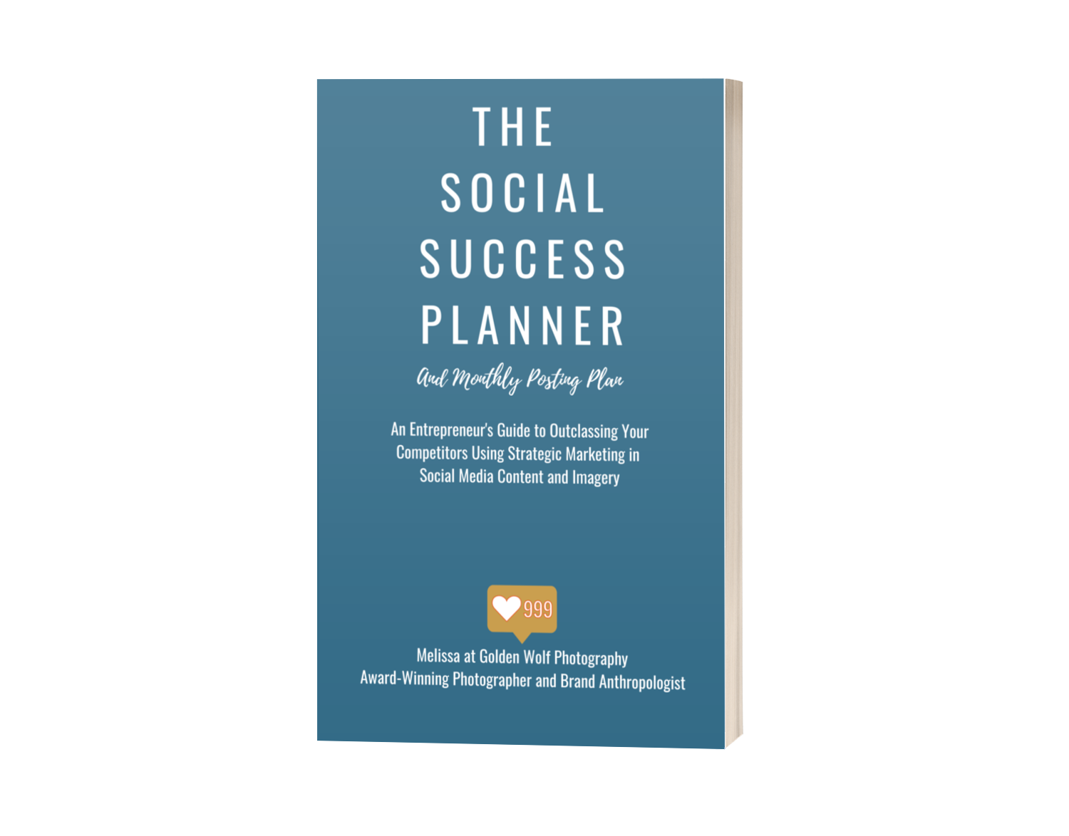 The Social Success Planner